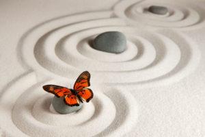 Teaching Toward Wholeness