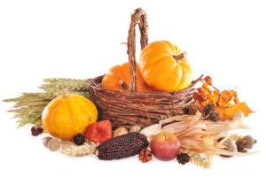 Harvesting Our WBI Community