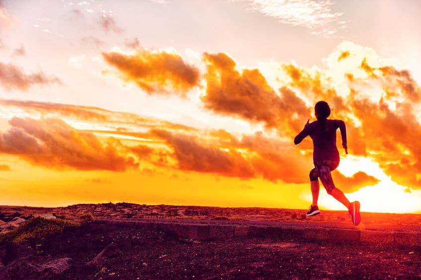WholeRunner: Flow Is the Runner's High